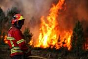 Autoridade Nacional de Protecção Civil encobre esquema de financiamento dos bombeiros
