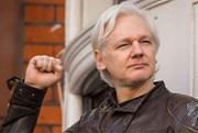 Concorda que Julian Assange deva ser condenado pelos crimes de conspiração contra diversos países?